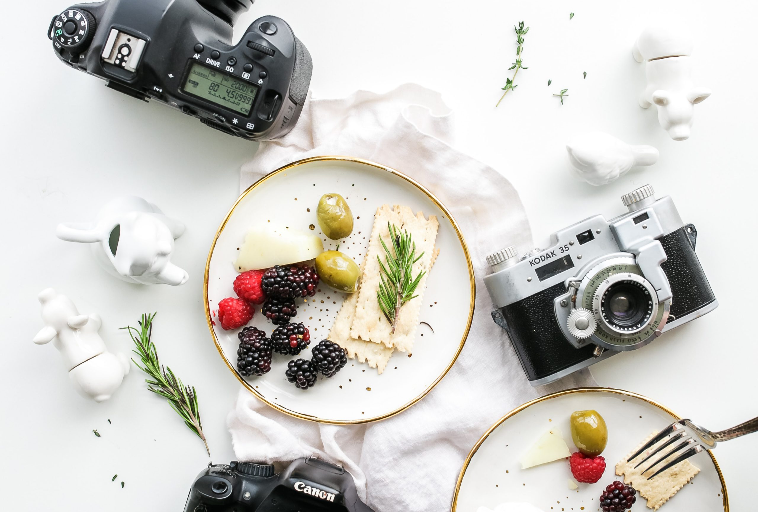 Our top 5 fave paid & free stock photography websites